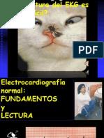 EKG 1 y 2 Normal Fdmentos y Lectura