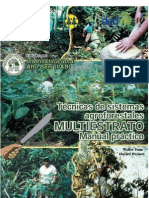 Agrofloresta Walter Yana