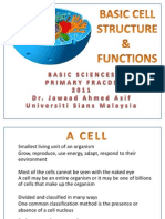 Basic Cell Structure & Function