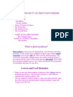 Project on Photosynthesis(Phillour Girls)