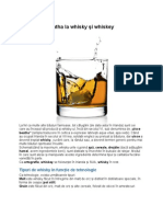 De la uisce beatha la whisky şi whiskey
