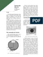 Biometrija Iris