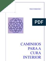 Trigueirinho - Caminhos Para a Cura Interior - By Paulohz