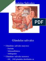 Clase Patologia Oral