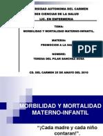 Morbilidad y Mortal Id Ad Materno-Infantil
