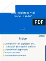 Incidentes y Nulidad Procesal