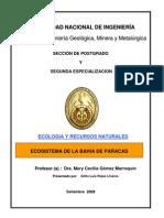 Ecologia Bahia Paracas Peru