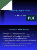 Patología Del Sistema Nervioso - Tumores