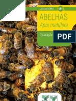 141_abelhas