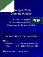 Patología Renal Glomerular