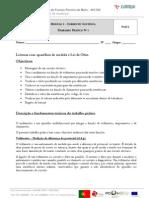 Prática 1 - Leituras com aparelhos de medida e Lei de Ohm