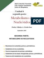 Nucleotidos VIERNES 30de Septiembre 2010
