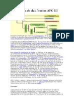 Sistema de Clasificacin APG III Por Finnnn
