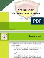 Seminario_incontinencia_urinaria