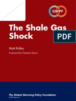 Shale Gas Materials