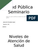 Salud Pública Seminario