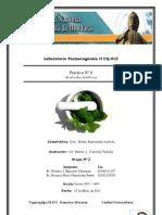 Practica Nº VIII Alcaloides Indólico