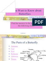 Butterfly Overview
