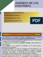 UNIDAD 2. DINÁMICA DE LOS ECOSISTEMAS