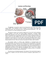 Anatomy and Physiology of Placenta