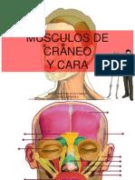 Musculos de La Cabeza Dejuan