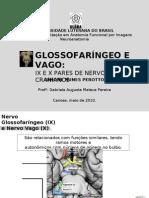 Glossofaríngeo e Vago