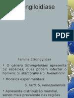 Strongyloides