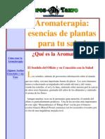 Valle Rivera, Rafael - Aromaterapia y Plantas Medic in Ales