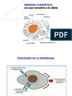 Membrana Plasma Tic A Transporte Senalizacion5