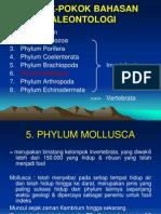 4249_Mollusca