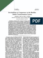 562 Bacillus Subtilis Optimization Transformation
