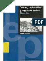 La Racionalidad de La Organizacion Andina-golte