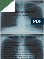 EXPLORACION_CAMPOS_PULMONARES