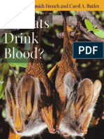 Do Bats Drink Blood Fascinating Answers to Questions About Bats Animal Q Amp a Series