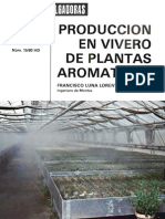 hd producción en vivero (aromáticas)