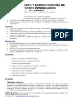 Syllabus to y Estructuracion de Proyectos Inmobiliarios Febrero 2011