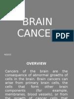 Brain CA Ppt