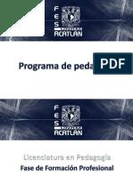 Programa de pedagogía preesp