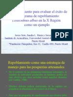 Erizoenespañol