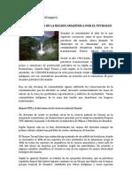 CONTAMINACIÓN DE LA REGION AMAZÓNICA POR EL PETROLEO