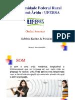 pdf-som