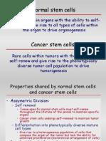 2007 Cancer Stem Cells-Biol 610 No Anim