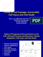 Lecture 2 - Forms of Cell Damage - 2 Sep 2006