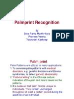 Palm Report