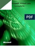 Processing Flat Files