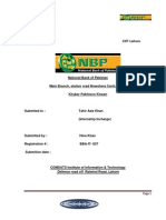 NBP Internship Report 1