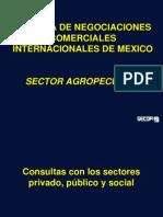México Flavio García 2