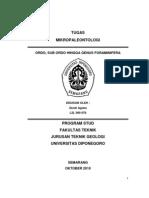 39230598-Foraminifera-Plantonik