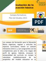 Campos Formativos Del Plan de Estudios 2011