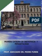 Alum Bra Mien To y Puerperio Patologico